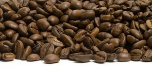 Coffee coast. Coffee pile picture taken from a very low altitude Stock Photography