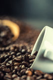 Coffee. Coffee beans. Coffee cup full of coffee beans. Toned image.  Stock Photo