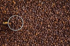 Coffee, Coffee Beans, Drink Royalty Free Stock Photography