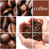 Coffee collage. Space for text Royalty Free Stock Image