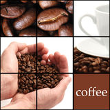Coffee collage. Made of coffee bean Royalty Free Stock Photo