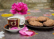 Coffee and Cookies and Flower Royalty Free Stock Images