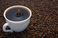 Coffee cup. With drop on beans background Stock Photos