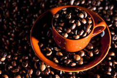 Coffee Cup. Coffee beans falling into a coffee cup over a pile of coffee Stock Photos