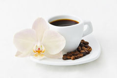 Coffee cup. Composition Coffee cup and orchid Stock Photography