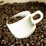 Coffee and cup. Coffee and cup closeup Stock Images