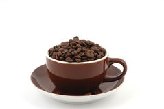 Coffee cup. Brown coffee beans in a brown coffee cup in front of a white background Royalty Free Stock Photos