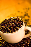 Coffee Cup. A cup full of gourmet coffee beans Royalty Free Stock Images