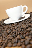 Coffee cup. White coffee cup with coffee beans on brown background royalty free stock photography