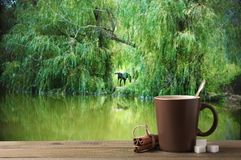Coffee cup against forest lake Stock Photos