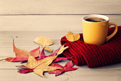 Coffee cup and autumn leafs Stock Photo