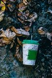 Coffee Cup in the autumn and the urban environment stock image