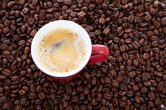 Coffee cup in background of beans Stock Photo