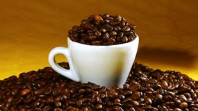 Coffee cup on a background of coffee beans Stock Photos