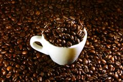 Coffee cup on a background of coffee beans Stock Image