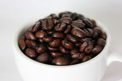 Coffee. A cup of coffee bean Royalty Free Stock Photo