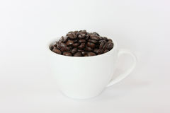Coffee. A cup of coffee bean Stock Image