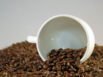Coffee Cup and Beans. A thematic image for coffee breaks during a meeting or presentation Stock Image