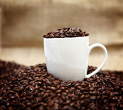 Coffee cup and beans. White coffee cup full of beans Stock Photography