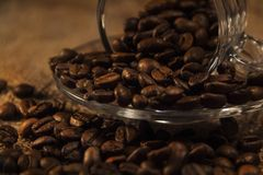 Coffee cup and coffee beans aromatic coffee royalty free stock images