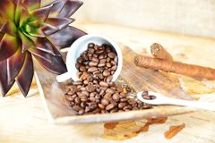 Coffee cup with beans royalty free stock photography