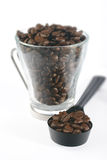 Coffee cup, beans and scoop. Roasted beans in a glass cup, with a coffee scoop. The beans in the cup have high DepthOfField Stock Photography