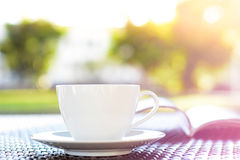 Coffee cup with book on blurr green nature background Royalty Free Stock Photography
