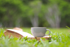 Coffee cup and books in the green grass in summer sunlight park Royalty Free Stock Photo