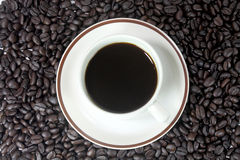 Coffee cup. With brown coffee beans texture Stock Image
