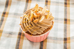 Coffee cup cake Stock Image