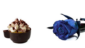coffee cup chocolate and blue rose Royalty Free Stock Images