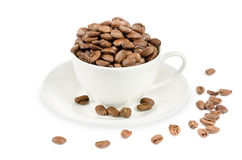 Coffee cup and coffe bean Stock Photos