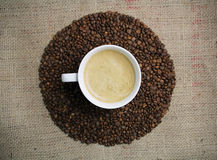Coffee cup on coffee bean background. Top view Royalty Free Stock Photography