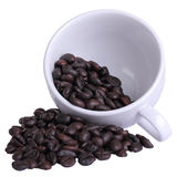 Coffee cup with coffee bean with clipping path Stock Image
