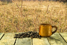 Coffee cup and coffee beans on grass background Royalty Free Stock Photography