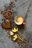 Coffee cup and coffee beans Stock Image