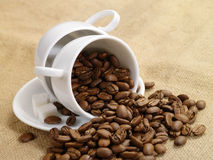 Free Coffee Cup. Coffee Beans On Burlap 2 Stock Photo - 8102810