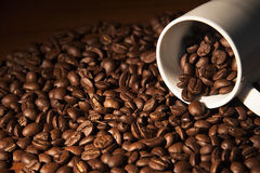 Coffee cup with coffee beans. Coffee time: a coffee cup with coffee beans Stock Images