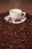 Coffee cup on dark roasted beans Stock Images
