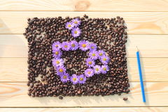 Coffee Cup. Cup drawn on the coffee beans flowers Royalty Free Stock Image