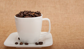 Coffee cup filled with beans Stock Images