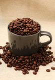 Coffee Cup Filled with Beans on Burlap Royalty Free Stock Photos
