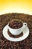 Coffee cup filled with roasted beans. Coffee cup filled with coffee beans on a mountain of coffee. View more of my coffee image collection royalty free stock photos