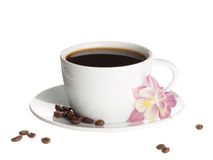 Coffee cup and flower catchment Stock Images