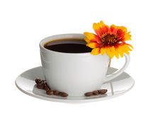 Coffee cup and flower Gaillardia Stock Photography