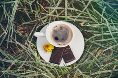 Coffee Cup on the frozen grass. Cup of coffee with chocolate on the frozen grass covered with frost Stock Image