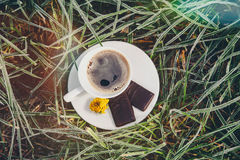 Coffee Cup on the frozen grass Royalty Free Stock Image