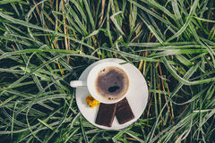 Coffee Cup on the frozen grass Royalty Free Stock Images
