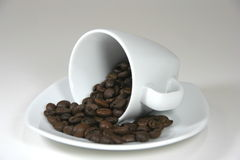 Coffee cup full of beans. Coffee cup with roasted coffee beans inside stock images