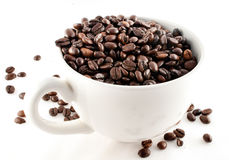 Coffee cup full of coffee beans. Spread on white background stock photography